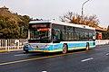 90527715 at Forbidden City, Jingshan Front St (20200106132335).jpg