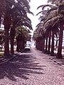 9400 Vila Baleira, Portugal - panoramio (4).jpg