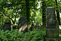 9818viki Cmentarz żydowski na Ślężnej. Foto Barbara Maliszewska.jpg