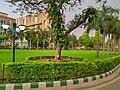 AIIMS New Delhi Building.jpg