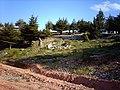 ARDIC ORMANI - panoramio.jpg