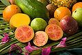 ARS guava.jpg