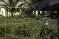ASC Leiden - F. van der Kraaij Collection - 05 - 005 - A woman at work in a vegetable garden with palm trees - Monrovia, Old Road, Montserrado, Liberia, 1975.tif