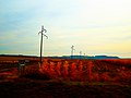 ATC Power Line - panoramio (18).jpg
