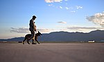 A dog and his handler, a working relationship 160614-F-SO188-188.jpg