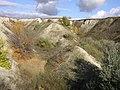 A gully (Budanova Gora) 2.jpg