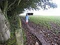 A muddy stretch on Hadrian's Wall National Trail - geograph.org.uk - 1020197.jpg