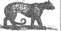 A new and accurate system of natural history; containing I Fleuron T131870-41.png