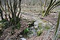 A very small waterfall, Brown's Wood - geograph.org.uk - 1760394.jpg