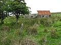 Abandoned Cottage - geograph.org.uk - 216263.jpg