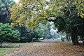 Acharya Jagadish Chandra Bose Indian Botanic Garden - Howrah 2011-02-20 1582.JPG