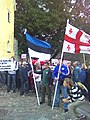 Actions in Estonia for the support of Georgia.jpg