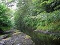 Afon Tywi (River Towy) - geograph.org.uk - 276151.jpg