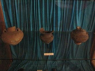 Coțofeni culture - Coţofeni culture pottery at Aiud History Museum, Aiud, Romania.