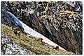 Alamudun, Kyrgyzstan - panoramio (3).jpg