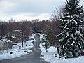 Alleghany, Blacksburg, VA 24060, USA - panoramio - Idawriter (4).jpg