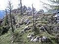Altenberg an der Rax, Austria - panoramio - Milan Nobonn (7).jpg