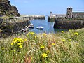 Amlwch port - panoramio.jpg
