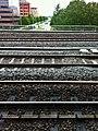 Amsterdam, julho de 2011 - panoramio (5).jpg