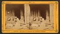 An Hour's search; or, Aunt Venue hunting for Florida fleas, from Robert N. Dennis collection of stereoscopic views 3.png