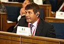 Andrew Doyle Ireland Senate of Poland.JPG