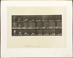 Animal locomotion. Plate 357 (Boston Public Library).jpg