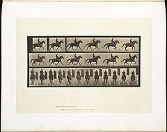 Animal locomotion. Plate 601 (Boston Public Library).jpg