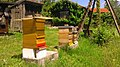 Apiary at the pedagogical bee trail in Kirchlauter 08.jpg