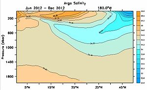 Argo (oceanography) -  A section of salinity along the date line computed from Argo data using the Global Marine Atlas.
