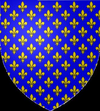 War of Saint-Sardos - Image: Armoiries France Ancien