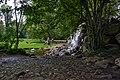 Arnhem Sonsbeek waterval A.jpg