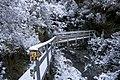 Arthurs Pass - panoramio - Maksym Kozlenko (22).jpg