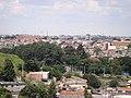Arvores do Parque Municipal de Barueri - panoramio.jpg