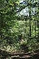 Arzakan-Meghradzor Sanctuary 027.jpg
