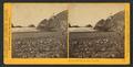 At the Cliff House, San Francisco, by Watkins, Carleton E., 1829-1916 5.png