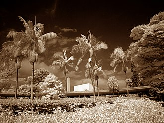 Infrared cut-off filter - Infrared Photography, Ibirapuera Park