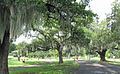 Audubon Park, New Orleans May 2010.jpg