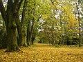 Autumn in Bohemia - panoramio.jpg