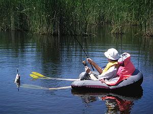 float billeder risengrød wiki