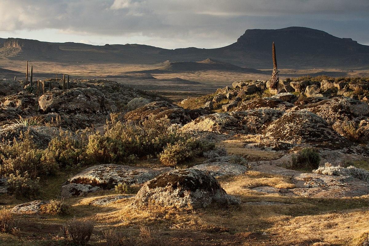 Ethiopia Travel  Bale Mountns