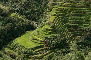 Science and technology in the Philippines - The Banaue Rice Terraces