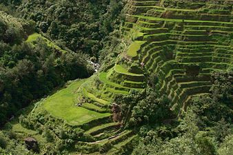 Banaue rice terraces wikipedia for What does terrace mean