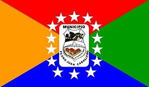 Pedro Juan Caballero, Paraguay - Image: Bandera de Pedro Juan Caballero