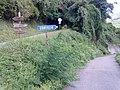 Barga, Province of Lucca, Italy - panoramio - jim walton.jpg