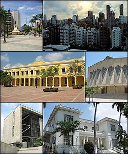 Top left:A Simon Bolivar monument in Barranquilla Bolivar Square, Top right:A panoramic view of centro (downtown) area, Middle left:right:Barranquilla Custom Office, Middle right:Catedral del Metropolitana Maria Rena (Maria Rena Metropolitan Cathedral), Bottom left:Caribbean Pilot Library (Biblioteca Piloto del Caribe), Bottom right:Barrio El Prado residential area