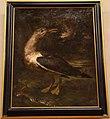 Bartolomeo bimbi, gabbiano con anguilla nel becco, 1722.JPG