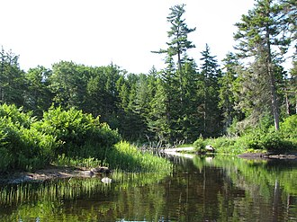 National Register of Historic Places listings in Herkimer County, New York - Image: Beaver River near Lake Lila