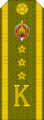 Belarus MIA—19 Cadet-Senior Ensign rank insignia (Olive)—Removable.png