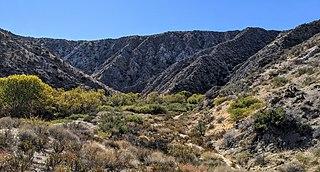 Big Morongo Canyon Preserve