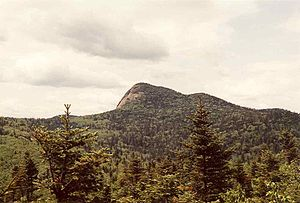 Big Slide Mountain (New York) - Big Slide Mt. seen from The Brothers Trail